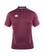 Team Dry Polo Shirt - Maroon
